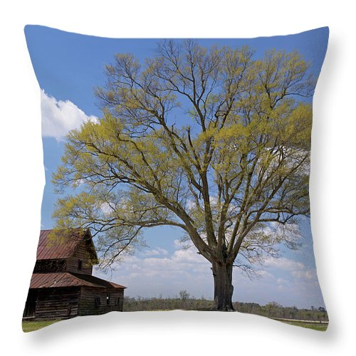 Red Throw Pillow featuring the photograph Endurance by Glennis Siverson