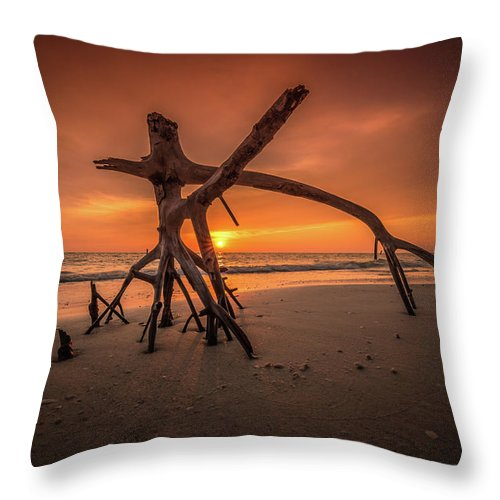 Landscape Throw Pillow featuring the photograph Ensanguing Sky by Lawrence Morgan