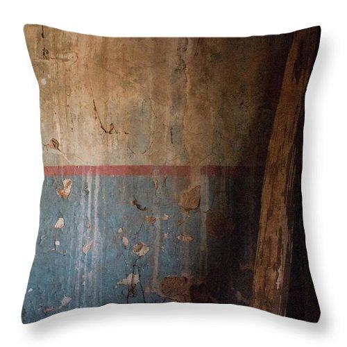 Still Life Throw Pillow featuring the photograph Ensepulcher Series by Sonja Czekalski