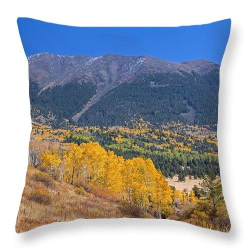 Fall Throw Pillow featuring the photograph Entering Hart Prairie by Susan Westervelt