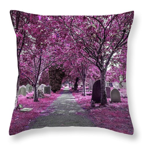 Cemetery Throw Pillow featuring the photograph Entrance To A Cemetery by Sebastien Coell