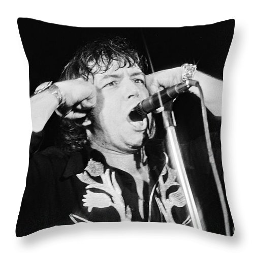 Dutch Throw Pillow featuring the photograph Eric Burdon In Concert-1 by Casper Cammeraat