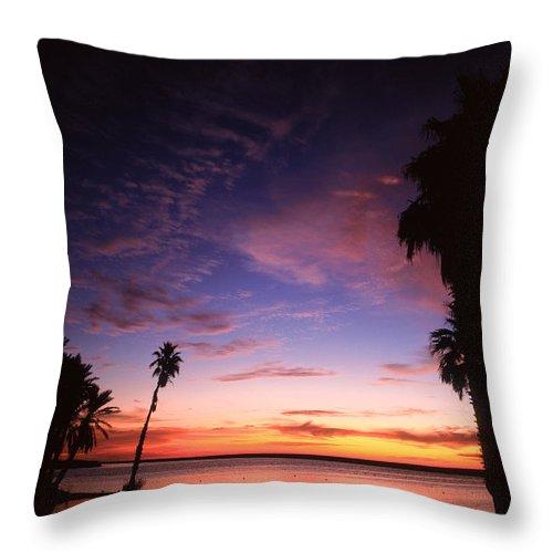 Mexico Throw Pillow featuring the photograph Estuary At San Jose Del Cabo by John Harmon