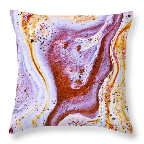 Abstract Throw Pillow featuring the photograph Eve by Linda McRae