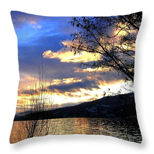 Sunset Throw Pillow featuring the photograph Evening Exhibition by Will Borden