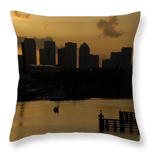 Tampa Bay Florida Throw Pillow featuring the photograph Evening In Tampa by David Lee Thompson