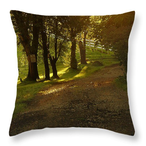 Landscape Throw Pillow featuring the photograph Evening Path by Steve Karol