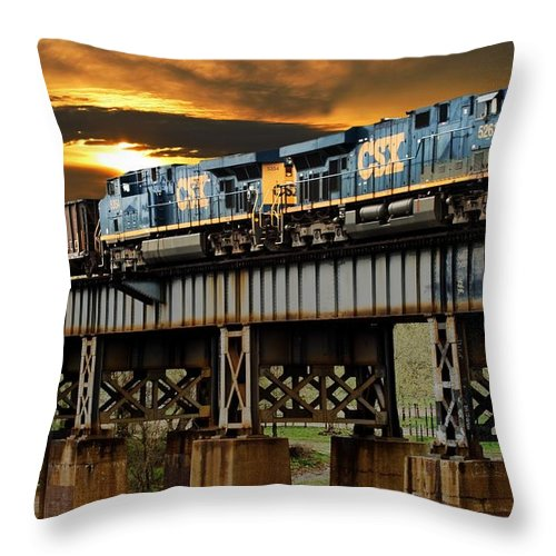 Train Throw Pillow featuring the photograph Evening Run by Tim Wilson