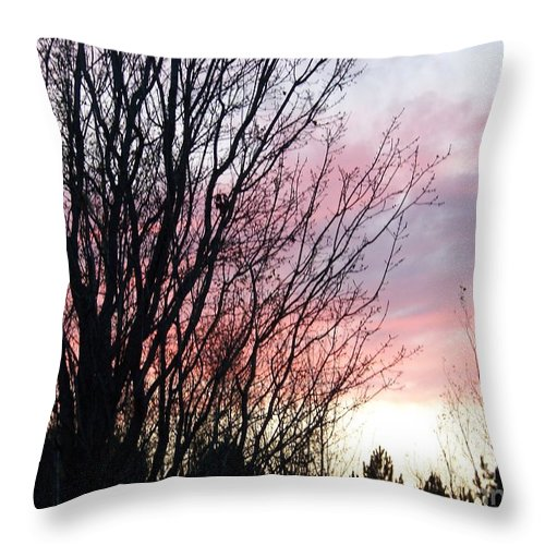 Sky Throw Pillow featuring the photograph Evening Sky - October 27 by Jackie Mueller-Jones