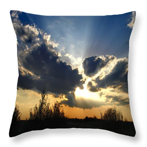 Landscape Throw Pillow featuring the photograph Evening Sky by Steve Karol