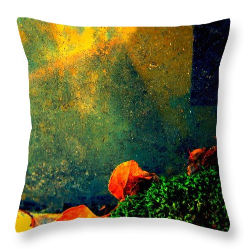 Abstract Throw Pillow featuring the photograph Ever Changing by Shirley Sirois