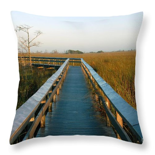 Everglades National Park Florida Throw Pillow featuring the photograph Everglades National Park by David Lee Thompson