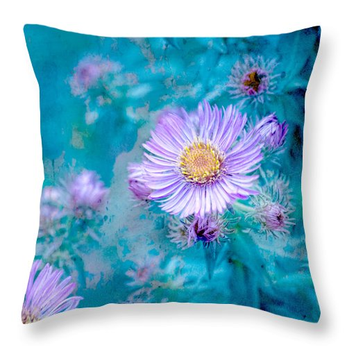 Lavender Flowers Throw Pillow featuring the photograph Every Good Gift by Bonnie Bruno