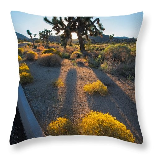 Tree Throw Pillow featuring the photograph Every Moment Joshua Tree National Park by Andre Distel