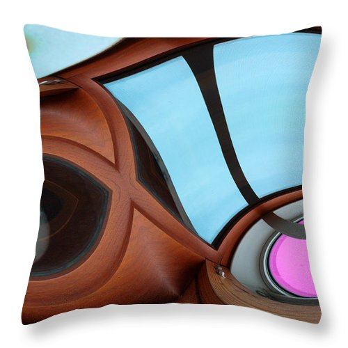 Photography Throw Pillow featuring the photograph Evolution by Paul Wear