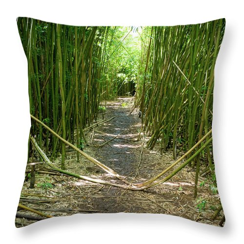 Climate Throw Pillow featuring the photograph Exlporing Maui's Bamboo by Cory Huchkowski