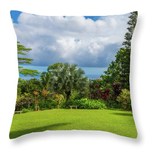 Hawaii Throw Pillow featuring the photograph Explosion Of Color by Joe Benning
