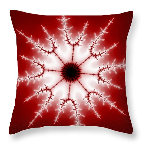 Fractal Throw Pillow featuring the digital art Eye Of The Beholder by Robert E Alter Reflections of Infinity