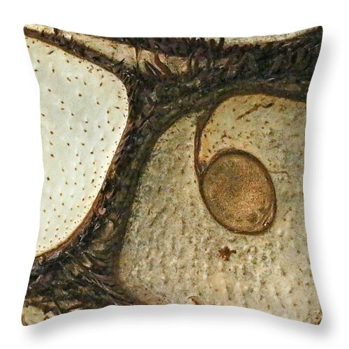 Abstract Throw Pillow featuring the photograph Eye Spy by Mother Nature
