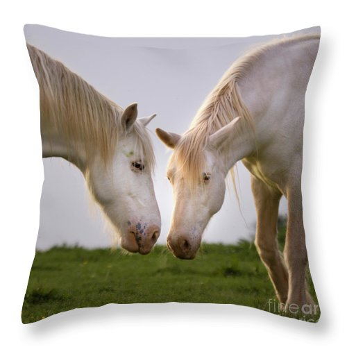 Unicorn Throw Pillow featuring the photograph Face To Face by Angel Ciesniarska