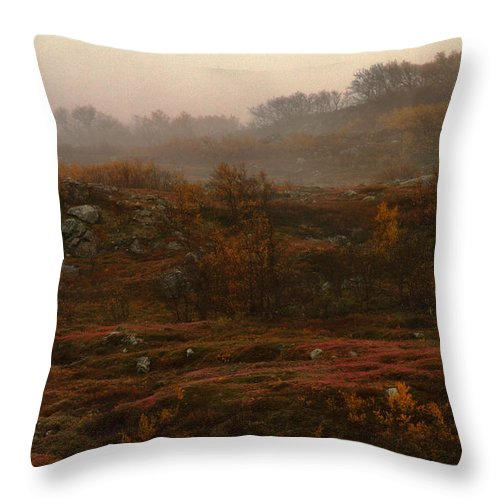 Fall Colors Throw Pillow featuring the photograph Fading Fall Colors II by Pekka Sammallahti