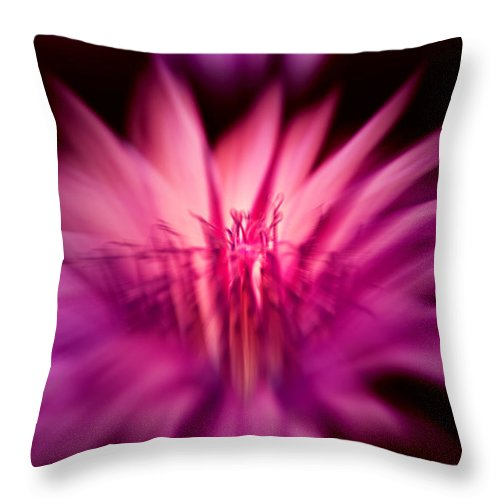 Botany Throw Pillow featuring the photograph Fairy Light by Max Steinwald