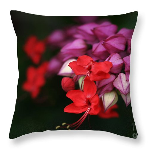 Flower Throw Pillow featuring the photograph Faith Holds Fast by Linda Shafer