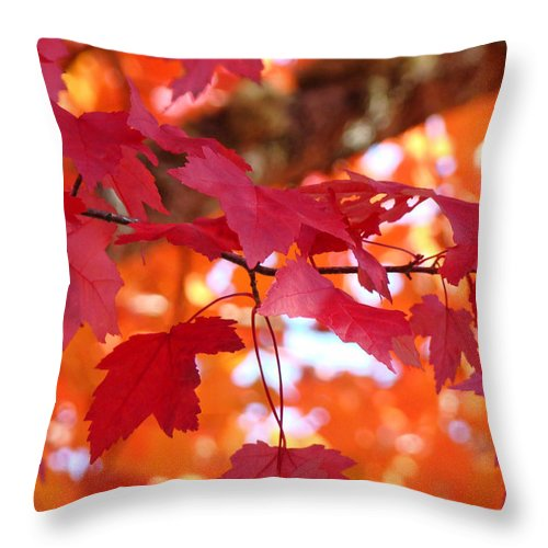 Autumn Throw Pillow featuring the photograph Fall Art Red Autumn Leaves Orange Fall Trees Baslee Troutman by Baslee Troutman