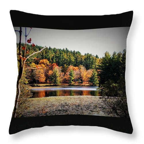 Bass Lake Throw Pillow featuring the photograph Fall At Bass Lake by Vice Photo