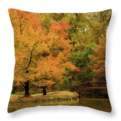 Jay Stockhaus Throw Pillow featuring the photograph Fall At The Arboretum by Jay Stockhaus