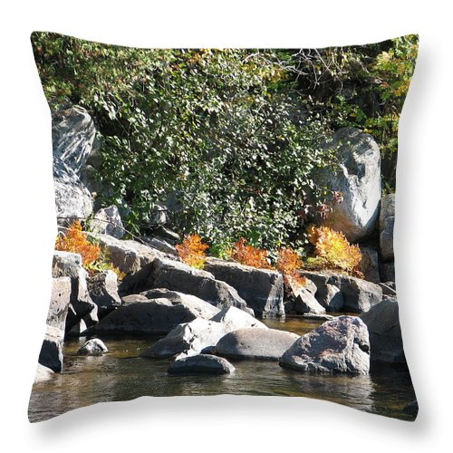 Creek Throw Pillow featuring the photograph Fall At The Creek by Kelly Mezzapelle
