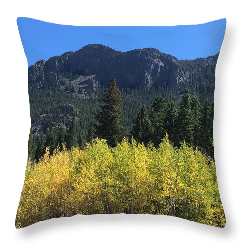 Landscape Throw Pillow featuring the photograph Fall At Twin Sisters by Kristen Anna