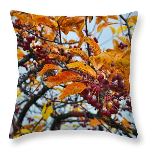 Berries Throw Pillow featuring the photograph Fall Berries by Tim Nyberg