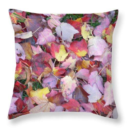 Throw Pillow featuring the photograph Fall Carpet by Karin Dawn Kelshall- Best