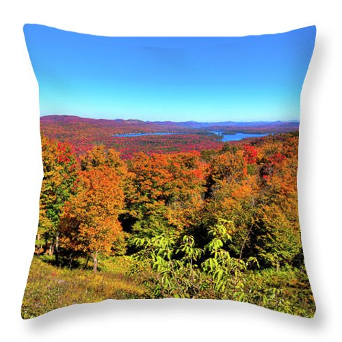 Autumn Landscapes Throw Pillow featuring the photograph Fall Color On The Fulton Chain Of Lakes by David Patterson