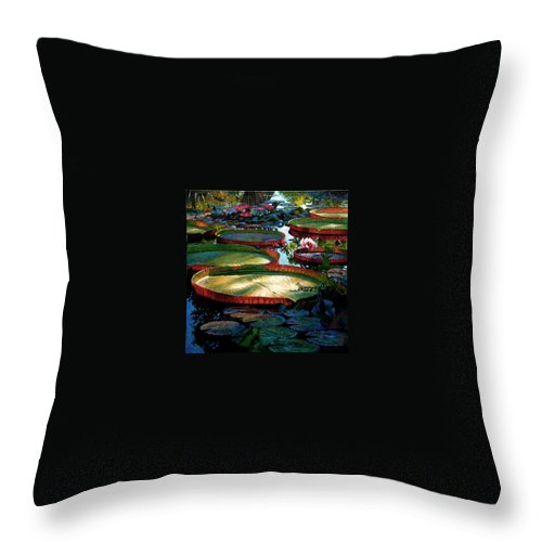 Landscape Throw Pillow featuring the painting Fall Colors in the Morning Sun by John Lautermilch