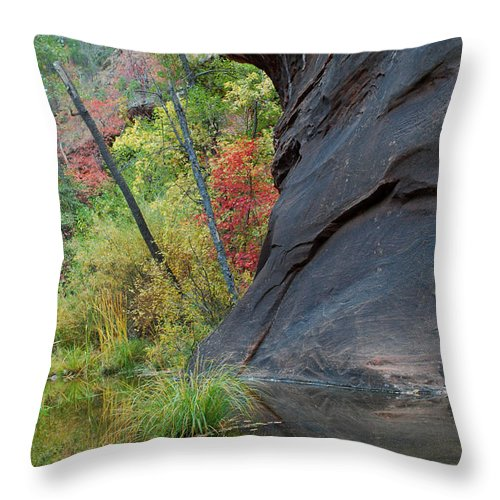 Landscape Throw Pillow featuring the photograph Fall Colors Peek Around Mountain Vertical by Heather Kirk