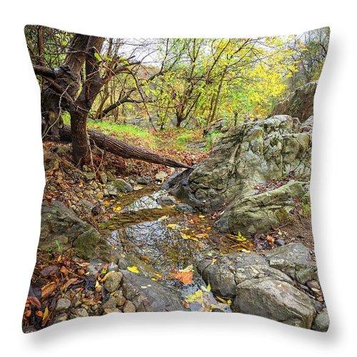 Fall Throw Pillow featuring the photograph Fall Creek View by Alan Raasch