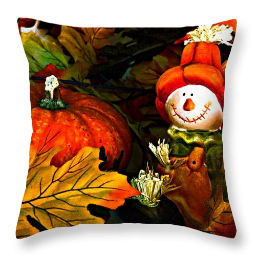 Fall Throw Pillow featuring the photograph Fall Decor by Dawn Van Doorn