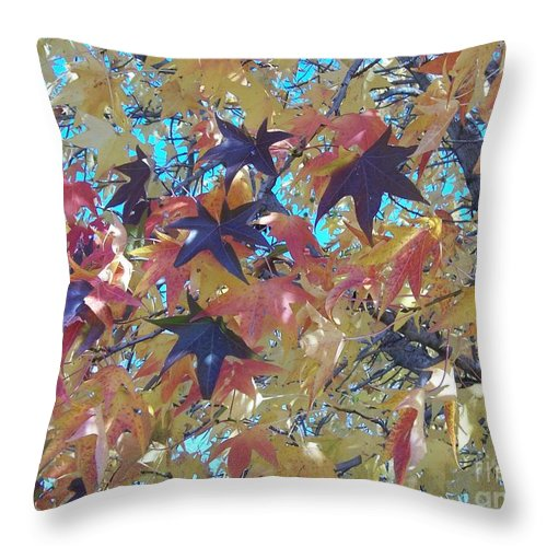 Fall Throw Pillow featuring the photograph Fall by Emily Young