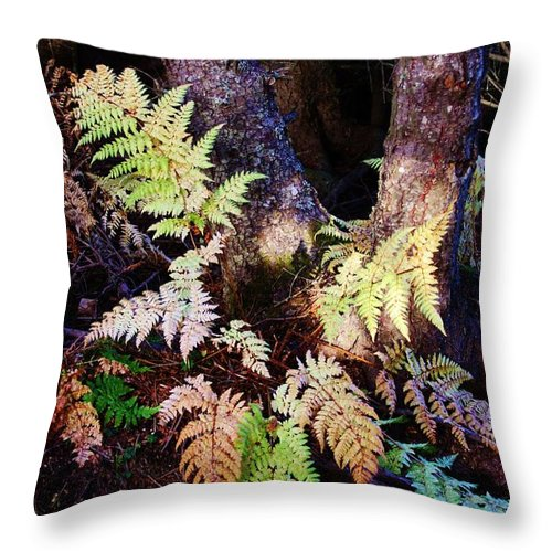 Alaskan Ferns In Autumn Throw Pillow featuring the photograph Fall Ferns by Lori Mahaffey