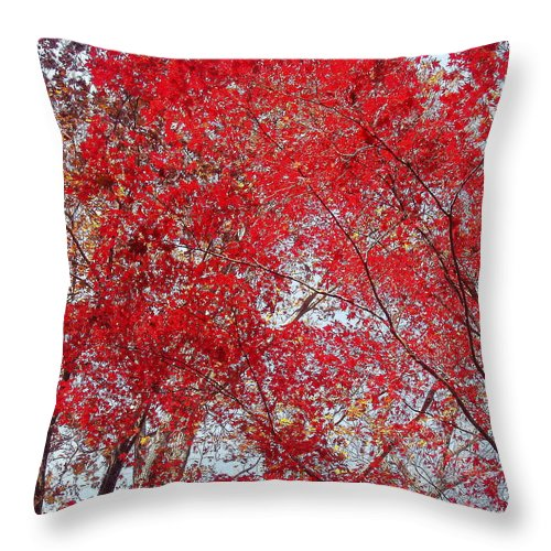 Leaves Throw Pillow featuring the photograph Fall Foilage by Deborah Crew-Johnson