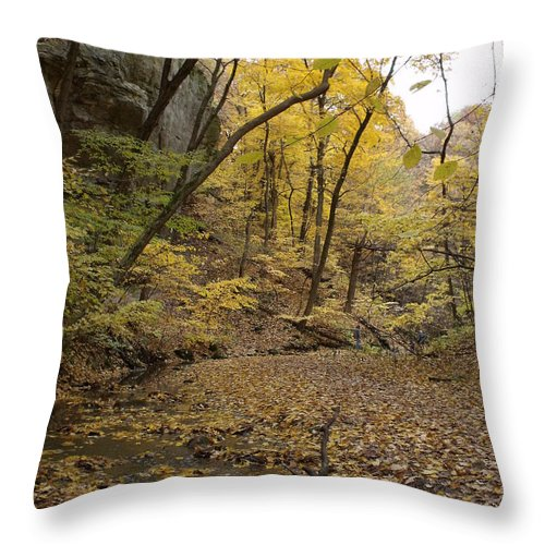 Starved Rock Throw Pillow featuring the photograph Fall Foliage Number 57 by Anna Villarreal Garbis