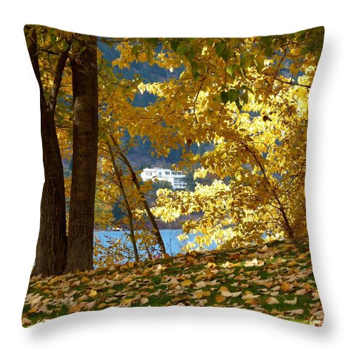 Kaloya Park Throw Pillow featuring the photograph Fall In Kaloya Park 3 by Will Borden