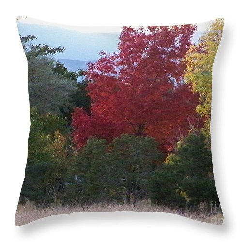 Fall Throw Pillow featuring the photograph Fall In Santa Fe by Brian Commerford