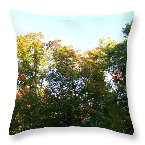 Trees Throw Pillow featuring the photograph Fall Is In The Air by Jackie Mueller-Jones