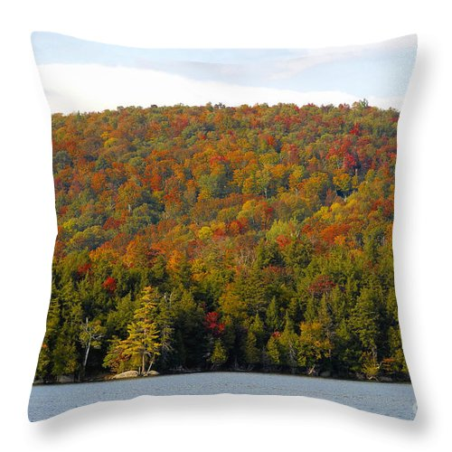 Fall Throw Pillow featuring the photograph Fall Island by David Lee Thompson