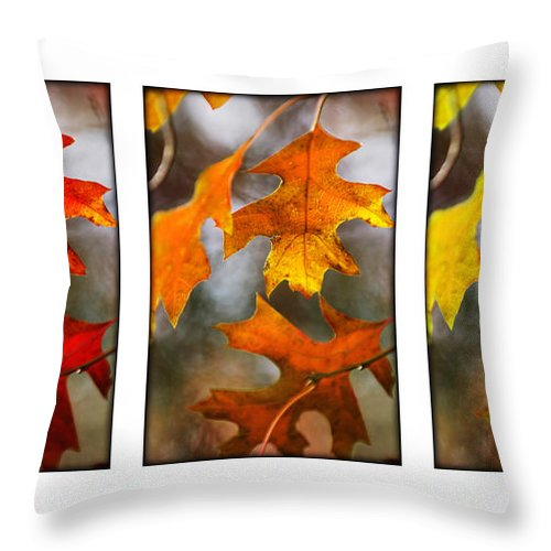 Leaves Throw Pillow featuring the photograph Fall Leaves by Jill Reger