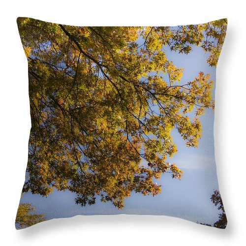 Fall Throw Pillow featuring the photograph Fall Magic by Teresa Mucha
