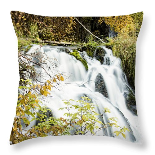 Waterfall Throw Pillow featuring the photograph Fall by Melinda Anderson